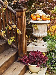 Gourd-Filled Urn- i do have a black urn planter i could use...just transplant the spruce that's currently living there? :)