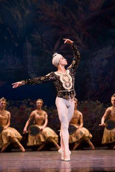 La Bayadere - © Bill Cooper courtesy of ROH Dancers Body, Male Ballet Dancers, Ballet Boys, Ballet Art, Ballet Pictures, Ballet Photos, Dance Pictures, La Bayadere, Dancer Photography