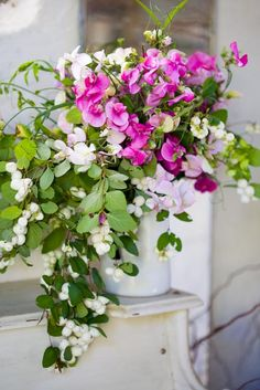 snowberry and lathyrus vernus..great container combo