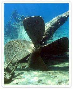 shipwrecks - Google Search