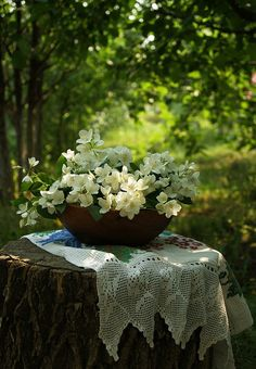 naturally beautiful --- lace , log & flowers, soft light...so comforting