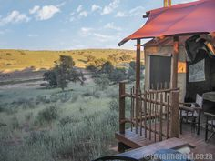 Top 5 favourite national parks in South Africa Game Reserve, West Coast, South Africa, Travel Inspiration, Gazebo, Road Trip, National Parks, Outdoor Structures, Cabin