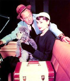 Audrey Hepburn et son caniche