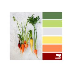 Design Seeds ❤ liked on Polyvore featuring design seeds, color palettes, backgrounds, colors and seeds