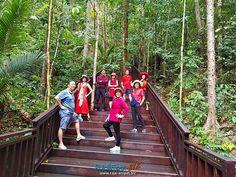 VISIT RAJA AMPAT INDONESIA www.rajaampat.biz #rajaampat #rajaampatbiz #travel #indonesia #tourindonesia #travelindonesia #visitindonesia #indonesiatravel #wonderfulindonesia #vacation #Индонезия #journey #holiday #bali #インドネシア Happy Holidays, Christmas Holidays, Bali, Holiday Checklist, Holiday Cartoon, Holidays Around The World, Journey, Holiday Appetizers, Holiday Cocktails