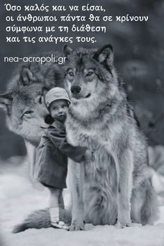 True Words, Husky, Wolf, Thoughts, Quotes, Greek, Inspired, Greek Language, Wolves