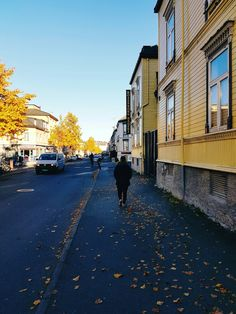Stuff aint trash, their fallen leaves anyone were wondering Fallen Leaves, Autumn Leaves, Trondheim, Norway, Street View, Fall Leaves