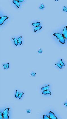 Borboleta 🦋 | Blue Wallpaper Iphone, Butterfly Wallpaper