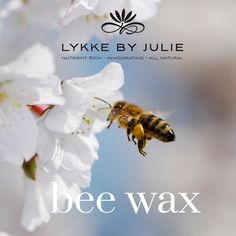 Beeswax is produced by honey bees to build honeycomb . The wax is formed in some glands found on the underside of the bee's abdomen . We use the beeswax in  our lip balm as a natural emulsifier.