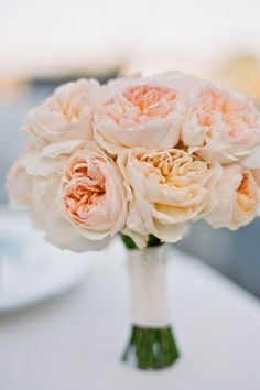 Peach colored Garden roses. Repinned By Scarlett's Flowers