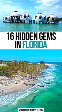 Florida Vacation Spots, Florida Travel Guide, Places In Florida, Usa Travel Guide, Visit Florida, Vacation Destinations, Travel Usa, Travel Tips, Cool Places To Visit