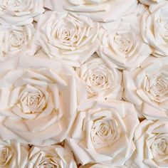 Statement Paper Flower Backdrop