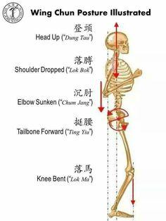 Proper wing chun stance Plus Wing Chun Martial Arts, Kung Fu Martial Arts, Self Defense Martial Arts, Chinese Martial Arts, Martial Arts Workout, Boxing Workout, Martial Arts Quotes, Martial Arts Styles, Martial Arts Techniques