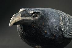 close image   Hib Sabin | Solitude of Raven