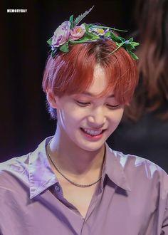 he's so beautiful. Carat Seventeen, Seventeen Debut, Mingyu Wonwoo, Seungkwan, Hoshi, Kpop, Vernon Hansol, Jeonghan Seventeen, Joshua Hong