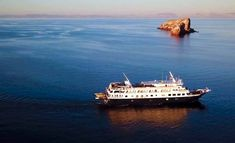 Explore the hidden gem of Mexican cruises during this opportunity to visit the Baja and Sea of Cortez. Cruise Vacation, Vacations, Cruise Ships, Cruises, Opportunity, Gem, Mexican, Explore, Adventure