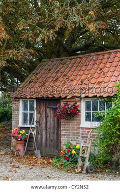 Stock Photo - Autumnal scene of a traditional red brick and pantile shed, used as a garden shed with Autumnal Scene Of A Traditional Red Brick And Pantile Shed, Used As A Stock Photo, Picture And Royalty Free Image. Brick Shed, Brick Garden, Patio Roof Covers, Free Shed Plans, Small Cottages, Garden Studio, Garden Buildings, Outdoor Buildings, Building A Shed
