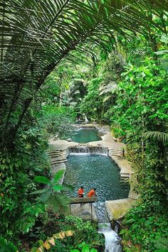 Natural thermal pools at Hidden Valley Springs in Philippines