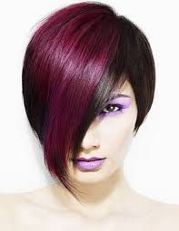 Image result for hair color panel