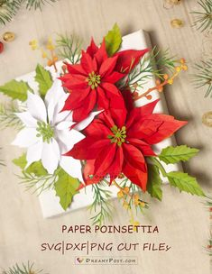 848 Best Paper Flowers Images In 2020 Paper Flowers Flower
