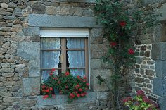 A beautiful window ~ by **Mary**, via Flickr