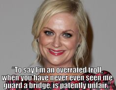 Best Amy Poehler quotes. Hilarious.