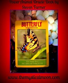 Card of the Day~ Butterfly; Whether you are in the darkness before the storm of emergence, the process of coming out of the self-created cocoon, or the full and glorious expression of the new you, it is the faith in the wisdom of Great Spirit and your conscious resonance with Source that will be your guiding force and it is very possible to go through major changes calmly and willingly when you view them as natural and hold relentless positive expectations.