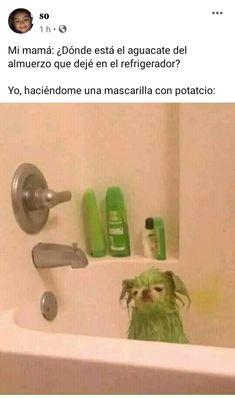 Funny Spanish Memes, Stupid Funny Memes, Funny Relatable Memes, Spanish Humor, Blackpink Memes, Best Memes, Pinterest Memes, Miraculous Ladybug Memes, Funny Images
