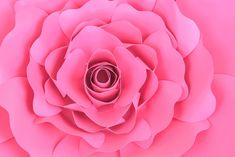 How to make giant penelope paper roses. Full tutorial and rose template patterns Paper Flower Patterns, Rose Patterns, Burlap Flowers, Flower Template, Paper Roses, Rose Design, A 17, Diy Paper, Diy Crafts