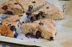 grain free lemon blueberry scones recipe grain free lemon blueberry ...