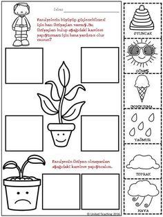 Science Worksheets for Kids. 20 Science Worksheets for Kids. Free Science Worksheets for Kids Science Worksheets, Science Lessons, Worksheets For Kids, Science Activities, Printable Worksheets, Free Printable, 1st Grade Science, Kindergarten Science, Kindergarten Worksheets