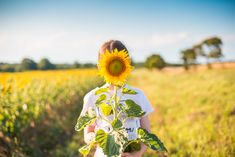 Free Image: Little Girl with Sunflower in a Sunflower Field | Download more on picjumbo.com!