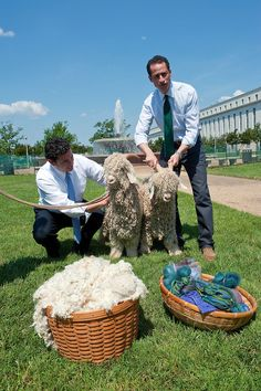 May 10, 2010: Reps. Jason Chaffetz and Anthony Weiner teamed up with two mohair goats to speak out against the outdated mohair subsidy as another example of wasteful government spending.