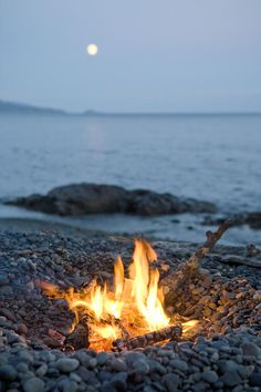 A Campfire On A Beach With A Full Moon Photograph by Taylor S. Kennedy