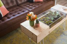Living Room Coffee Table with Plants