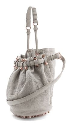 Alexander Wang Diego Bucket Bag and in this color