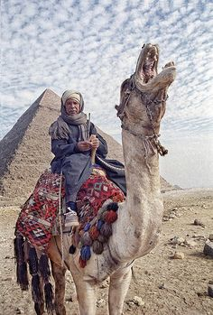 http://www.greeneratravel.com/ EGYPT04. GIZA the Pyramids. The roar of a camel will indeed entertain.