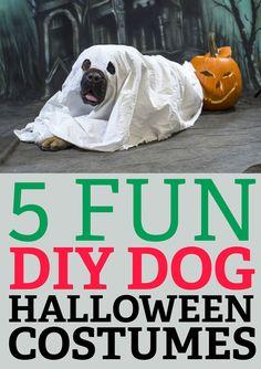 5 Fun DIY Halloween Costumes!