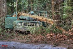 Crushed Ford Flatbed in Harrison Mills, British Columbia