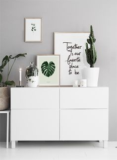 Botanische print met gatenplant. €11
