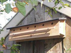 Nestkastbouw - Mussen