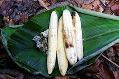 アフリクック 焼きバナナ