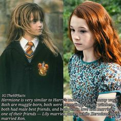 New Funny Harry Potter Facts Comment Ideas Harry Potter Puns, Harry Potter Cast, Harry Potter Characters, Harry Potter Universal, Harry Potter Hogwarts, Harry Potter World, Gina Weasley, No Muggles, Harry Potter Funny Pictures