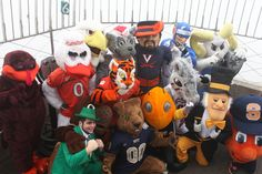 July 1, 2013: To celebrate the addition of #NotreDame #FightingIrish, #Pitt Panthers and #Syracuse Orange to the #ACC, the mascots of all 15 schools—including #BostonCollege, #Clemson Tigers, #Duke, #FloridaState Seminoles, #GeorgiaTech, #Maryland Terrapins, #Miami Hurricanes, #NorthCarolina #TarHeels, #NCState, #Virginia Cavaliers, #VirginiaTech and #WakeForest—raced up the building to our 86th floor Observatory. #ACCtakesNYC #EmpireStateBuilding #onlyatESB