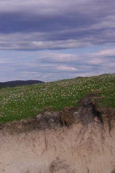 Machair edged Dune Outer Hebrides, Dune, Mountains, Nature, Flowers, Pictures, Travel, Photos, Naturaleza