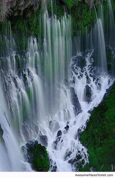 Burney falls -- ( close up )- Location Shasta County, California, USA Coordinates 41°00′39″N 121°39′10″W Type Cataract Total height 114 feet (35 m)[2] Number of drops 1 Total width 250 feet (76 m)[2] Watercourse Burney Creek Average flow rate 195.0 cu ft/s (5.52 m3/s)