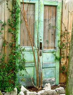 green doors with wire