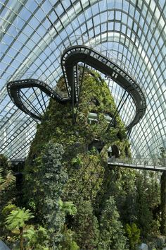 Cooled conservatories at Gardens, Singapore, 2006 #architecture #garden