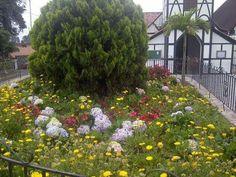 Bella foto de la Colonia Tovar!