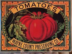 tomato labels and vintage tomato illustrations